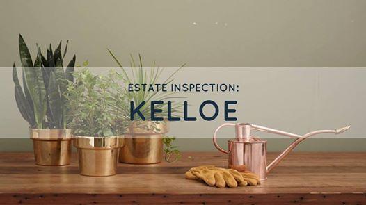 Estate inspection - Kelloe