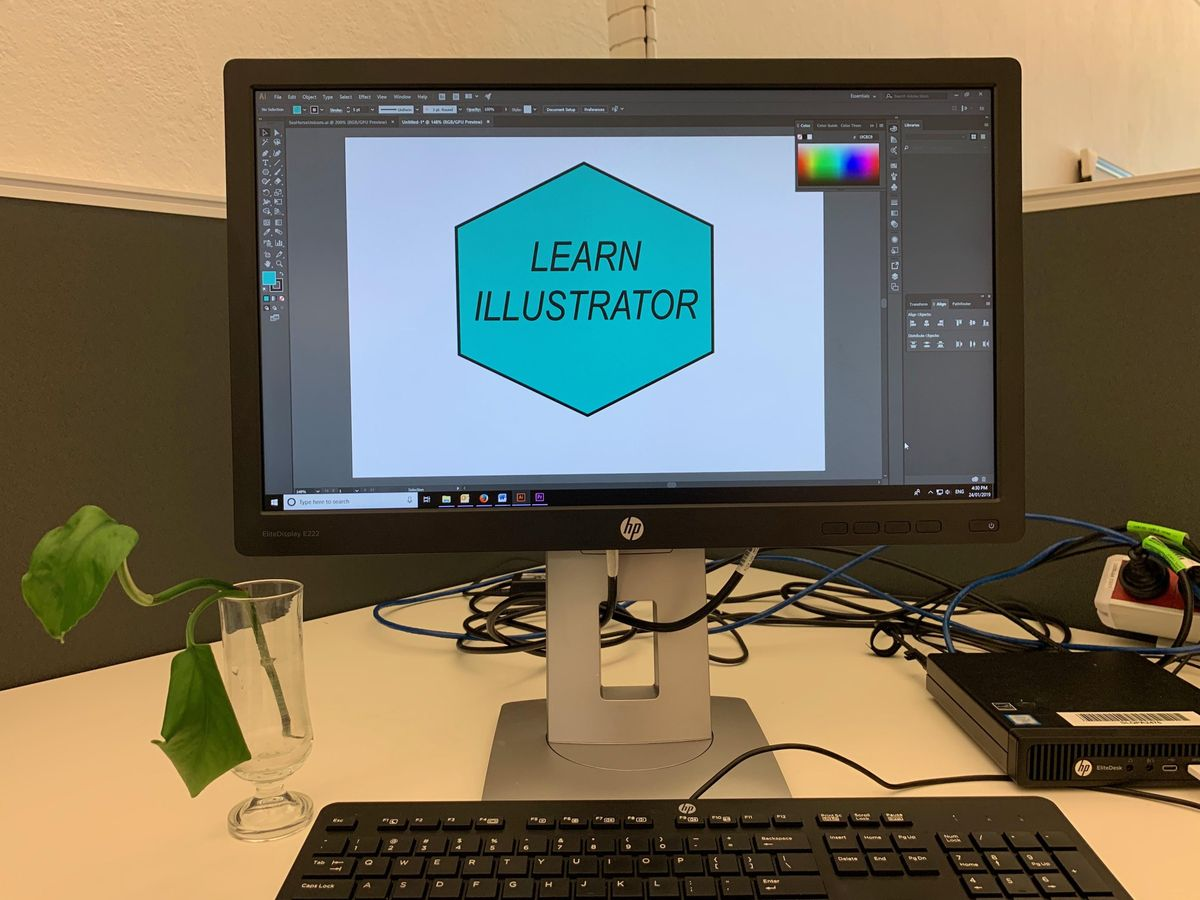 Software Induction: Illustrator at State Library of Queensland