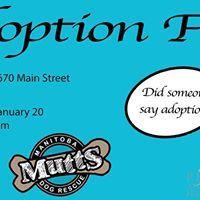 Pet Valu Adoption Fair