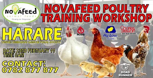 Novafeed Poultry Training
