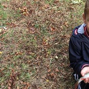 Free Lets Fish - Godstow  - Learn to Fish Sessions -Tring Anglers &...