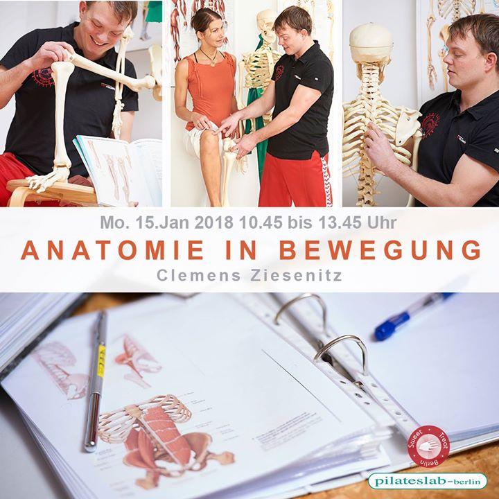 Anatomie in Bewegung at pilateslab-berlin, Berlin