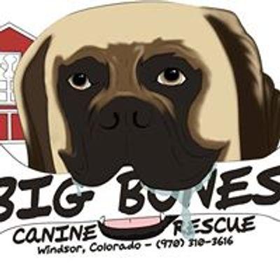 Big Bones Canine Rescue