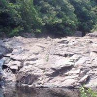 Ponds &amp Waterfalls