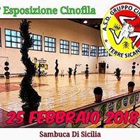 2Esposizione Cinofila Sambuca Di Sicilia