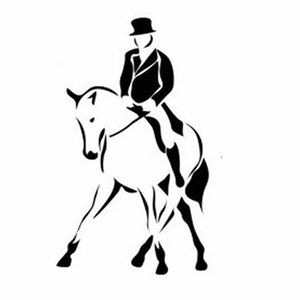 Dressage At Hitts Equestrian. Open to All