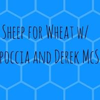 Sheep for Wheat w Joey Capoccia and Derek McSwain