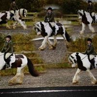 Spring and summer unaffiliated dressage competition