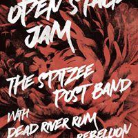 Sptizee Post Band w Dead River Rum Rebellion at the Ship Jam