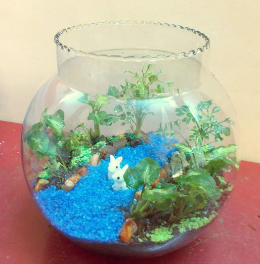 8 Terrarium Garden Workshop