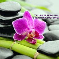 Taller Feng Shui. 35 Bydalorca 609744693
