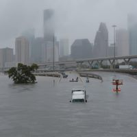 Hurricane Harvey Relief and Service Trip