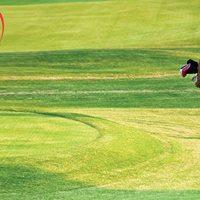Heart &amp Stroke Golf Classic