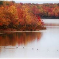 Celebrate Fall Photo Contest
