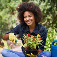 Class Flower Gardening for Beginners