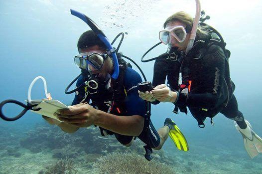 Tauchkurs Advanced Open Water Diver Zrich