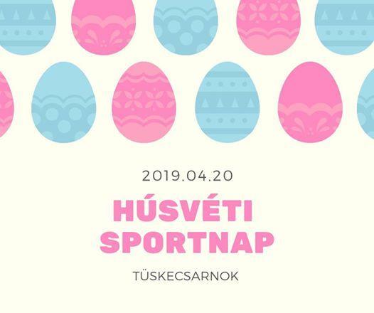 Hsvti Sportnap