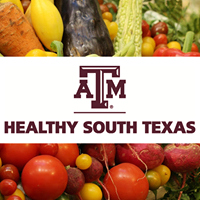 Healthy South Texas Nueces County