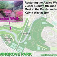 Restoring the Azalea Walk