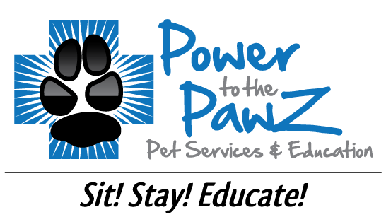 Austin Pet Tech Pet CPR & First Aid Instructor Training