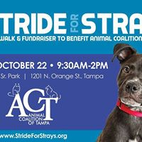 17th Annual Stride For Strays