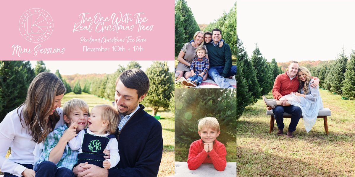 Christmas Mini Sessions - The One With The Real Christmas Trees