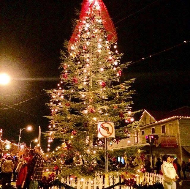 Christmas Tree San Jose: Christmas Tree Lighting Ceremony At Reedley Downtown