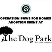 Alexandria VA - Adoption Event