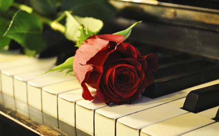 ×ª×•×¦× ×ª תמונה עבור romantic piano†