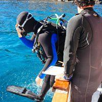 Scuba Dive Boat Trip