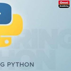 Mastering Python Free Workshop WITH Certificate