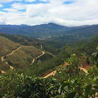 National Coffee Day Tasting Costa Rica Vara Blanca