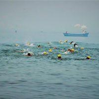 The Goa Swimathon 2017