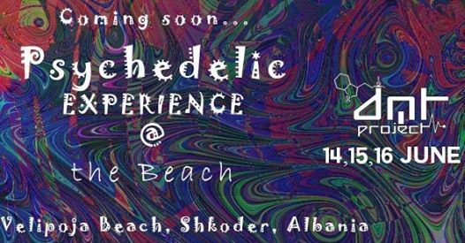 Psychedelic Experience @The Beach(Velipoja Gathering) Open
