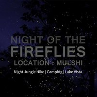 Night of the Fireflies - The Arrival