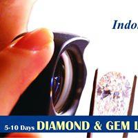 SINGEMs Diamond &amp Gem Lab Workshop 5-15 August Indore Ujjain