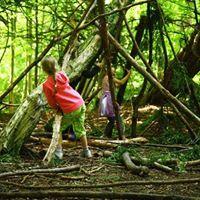 Wild in the Wilderness - Family Walk