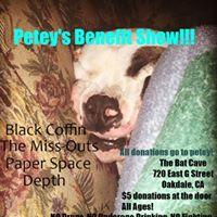 Peteys Benefit Show