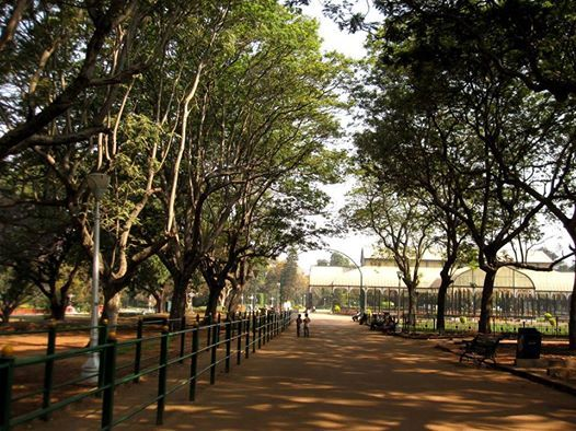 Lalbagh eco walk.