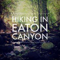 Health &amp Wellness HikeWalk Eaton Falls