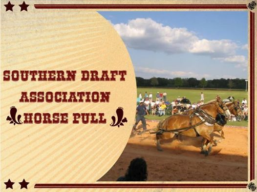 Southern Draft Association Horse Pull