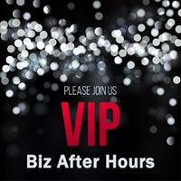 VIP Biz After Hours  Networking