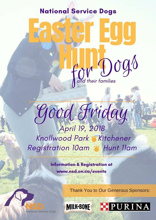 Easter Egg Hunt Fundraiser - Kitchener