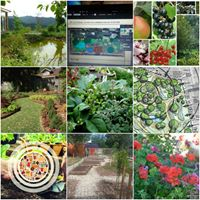 Food Forest &amp Urban Farming Workshop - Perennial food systems
