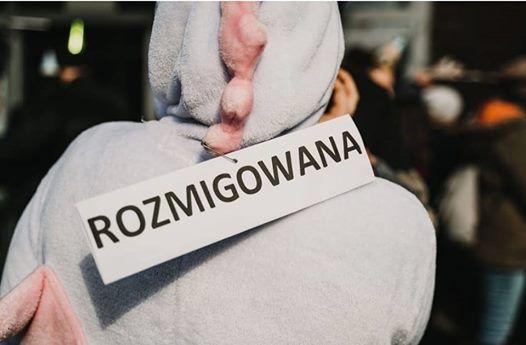 Fina Projektu - Rozmigowani