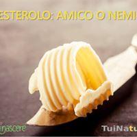 Colesterolo Amico o Nemico Incontro a Modena