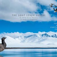 The Lost Leigh Goose