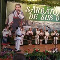 Sarbatoarea de sub brazi - festival concurs de folclor