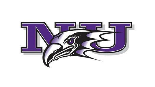 Niagara University Purple Eagles Womens Basketball vs. Marist College Red Foxes Womens Basketball