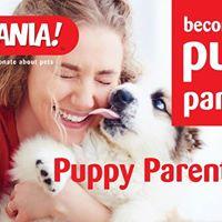 New Puppy Parent Class Limerick Eastpoint